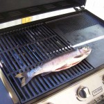 Trout on BBQ