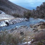 Snowy river below Guthega
